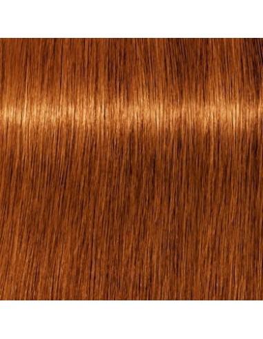 7-70 IGORA ROYAL ABSOLUTES matu krāsa...