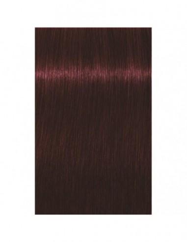 4-80 IGORA ROYAL ABSOLUTES matu krāsa...