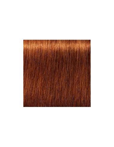 7-7 Igora Royal Color10 matu krāsa 60ml