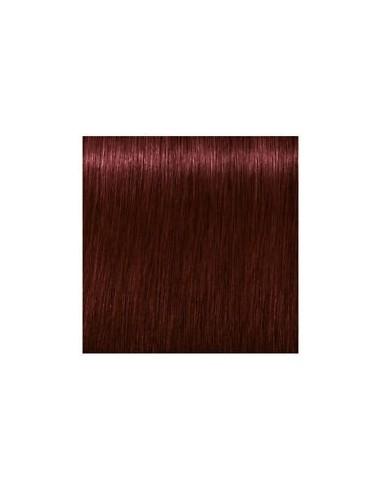 Igora Royal Color10 4-88 60ml